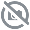 Boisson énergétique Born Iso Pro Red 440g Pomegranate Berry (Grenade & Fruits rouges)